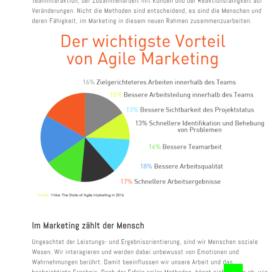 Agile Teams durch agile Transformation 08 2018 Expertin fuer kooperative Zusammenarbeit Ulrike Stahl