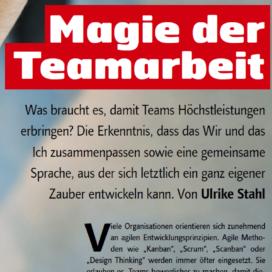 Magie der Teamarbeit Bildung aktuell 04 2018 Expertin fuer das neue WIR Ulrike Stahl