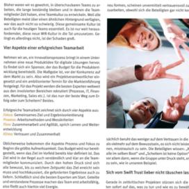 Teamwork und das neue WIR_SteineErden 2019_08 von Ulrike Stahl Teamentwicklung mit Insights Discovery
