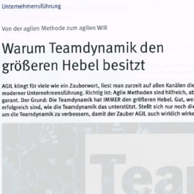 Warum Teamdynamik den groesseren Hebel besitzt Steine+Erden 04 2018 Expertin fuer das neue WIR Ulrike Stahl