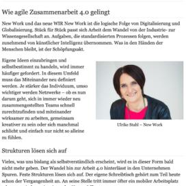 Wie agile Zusammenarbeit gelingt auf Careerslounge 03_20 von Ulrike Stahl Rednerin fuer Kooperation